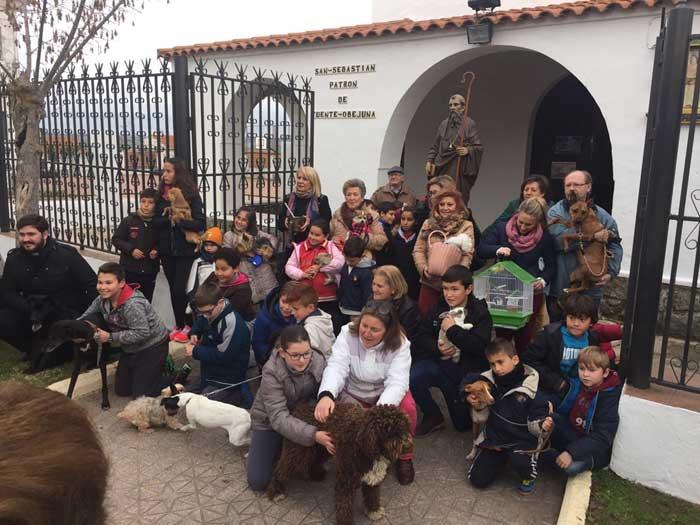 Bendición de animales. San Antón 2016 1