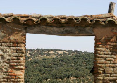 Cañada del Gamo GALERIA 1