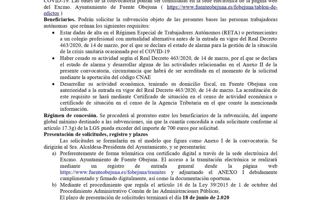 CONVOCATORIA DE SUBVENCIONES AL APOYO DEL EMPLEO AUTÓNOMO